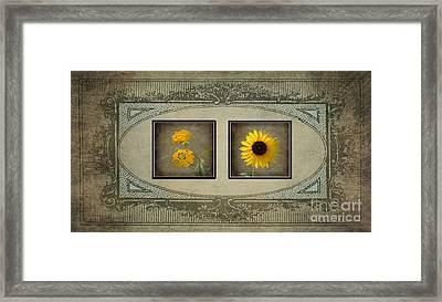 Vintage Yellow Flowers Framed Print