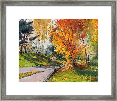 Viola In A Nice Autumn Day  Framed Print by Ylli Haruni