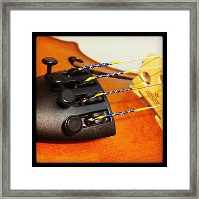 #viola #violin #instrument #orchestra Framed Print