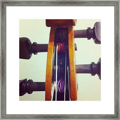 #viola #violin #music #strings Framed Print