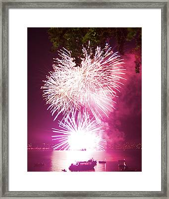 Framed Print featuring the photograph Violet Explosion by JM Photography