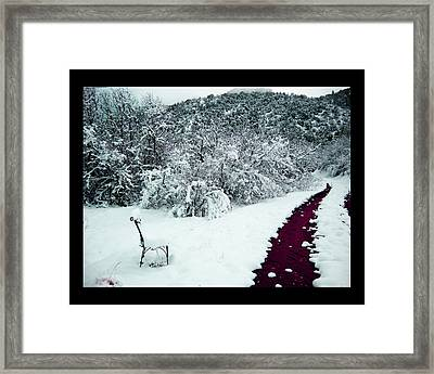 Framed Print featuring the photograph Violet Passage by Susanne Still