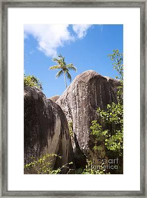 Framed Print featuring the photograph Virgin Gorda by Leslie Leda
