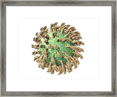 Virus With Hands Framed Print by Laguna Design