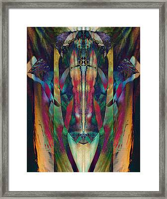 Visage Of The Alchemist Framed Print by David Kleinsasser