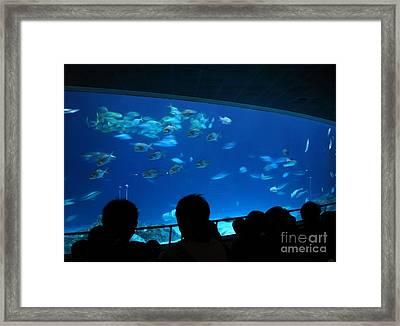 Visitors At Ocean Aquarium Framed Print by Yali Shi