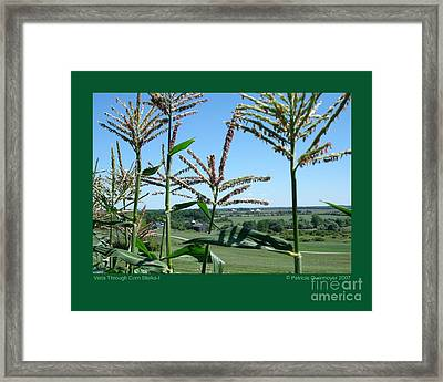 Vista Through Corn Stalks-i Framed Print