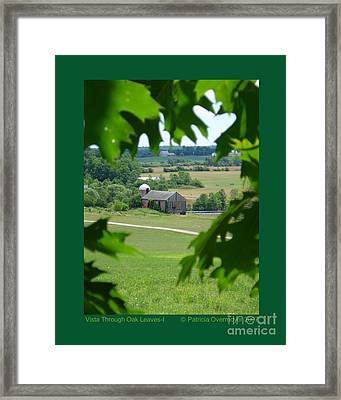 Vista Through Oak Leaves-i Framed Print