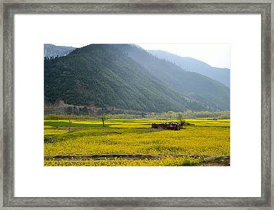 Visual Treat Framed Print by Fotosas Photography