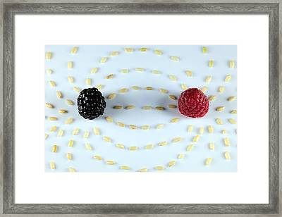 Vitalberry And Raspberry Depicting Magnetic Field Line Framed Print by Paul Ge