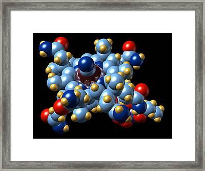 Vitamin B12 (cyanocobalamin) Molecule Framed Print