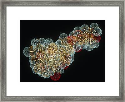 Vitamin B12 Molecule Framed Print by Pasieka