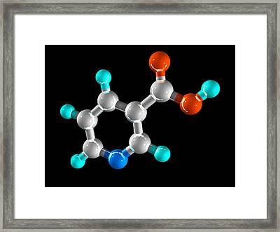 Vitamin B3, Molecular Model Framed Print