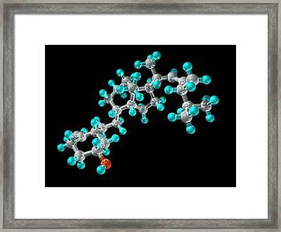 Vitamin D2, Molecular Model Framed Print