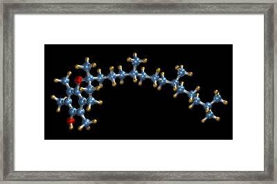 Vitamin E (tocopherol) Molecule Framed Print