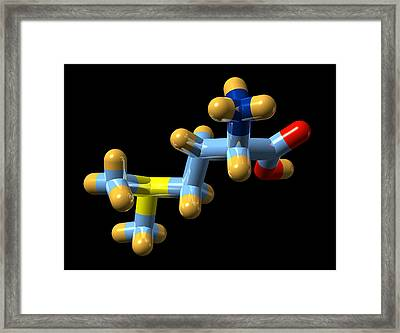 Vitamin U, Molecular Model Framed Print