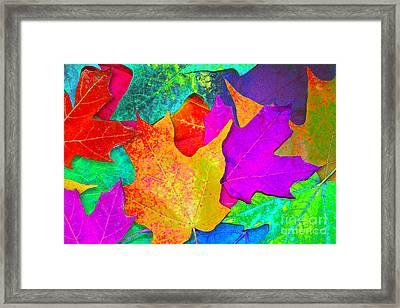 Vivid Leaves 1 Framed Print by Ginny Gaura