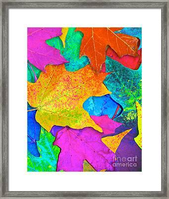 Vivid Leaves 3 Framed Print by Ginny Gaura
