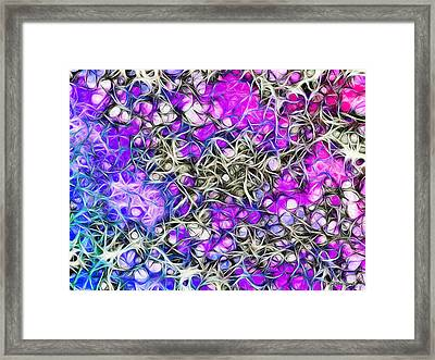Vivid Orchard Framed Print by Stephen Younts