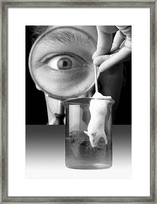 Vivisection Framed Print by Victor De Schwanberg