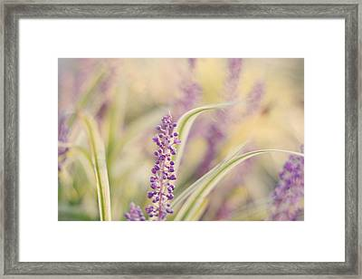 Voices Carry Framed Print by Amy Tyler