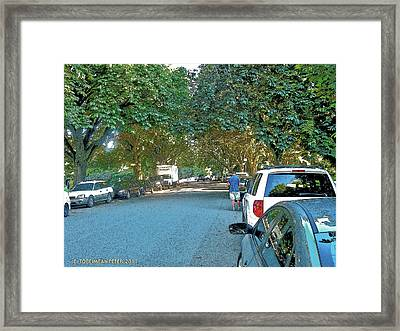 Volunteer Park - August Light Framed Print