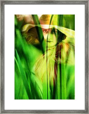 Voyeur Framed Print by Rebecca Sherman