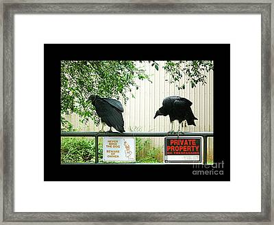 Framed Print featuring the photograph Vultures Guarding Property by Renee Trenholm