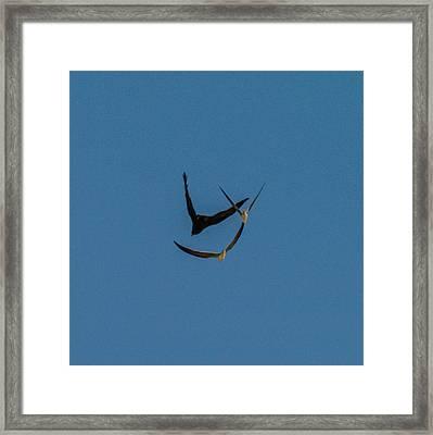 VY Framed Print