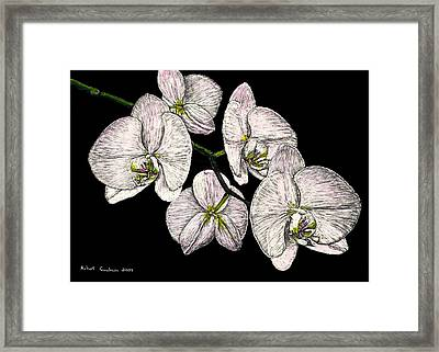 Wade's Orchids Framed Print by Robert Goudreau