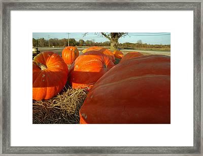 Wagon Ride For Pumpkins Framed Print by LeeAnn McLaneGoetz McLaneGoetzStudioLLCcom