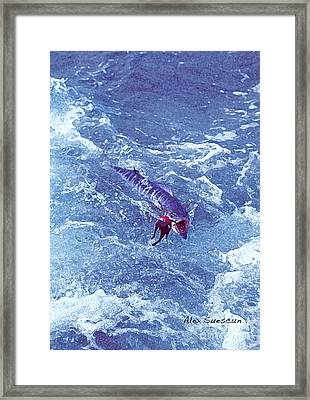 Wahoo In The Prop Wash Framed Print