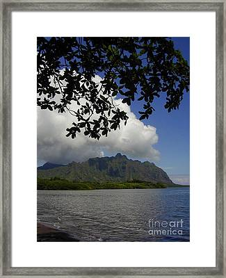 Waiahole Beach Park Framed Print by Mark Gilman