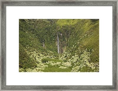 Waimoku Falls II Framed Print by Jenna Szerlag