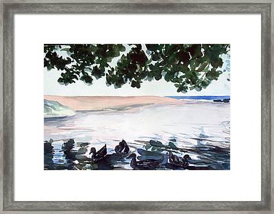 Wainiha Ducks Framed Print by Jon Shepodd