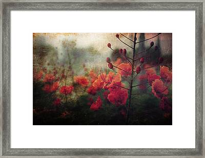 Waiting For Better Days Framed Print by Laurie Search