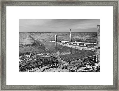 Waiting For Fish Framed Print