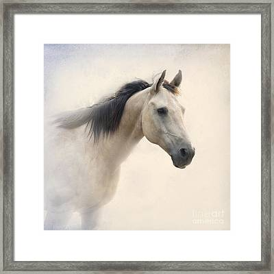 Waiting For My Lady Framed Print by Betty LaRue