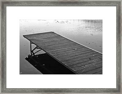 Waiting For Summer Framed Print by David Rucker