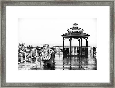Waiting For The Crowds Framed Print by John Rizzuto