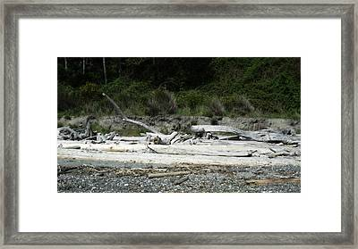 Waiting For The Tides To Come In Framed Print by Lee Yang
