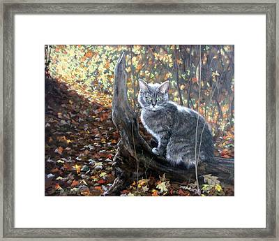 Waiting In The Woods Framed Print