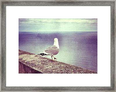 Waiting... Framed Print by Marianna Mills