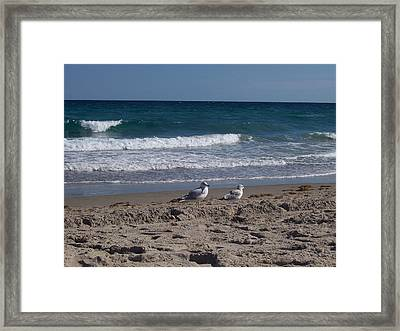 Framed Print featuring the photograph Waiting by Sheila Silverstein