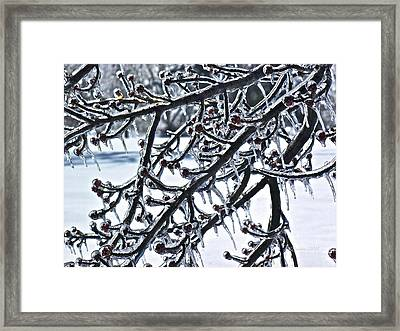 Waiting To Exhale Framed Print by Rotaunja