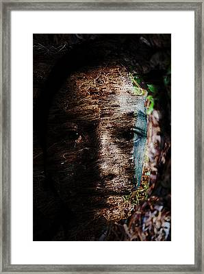 Waldgeist Framed Print by Christopher Gaston