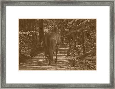 Framed Print featuring the photograph Walk Down Memory Lane by Davandra Cribbie
