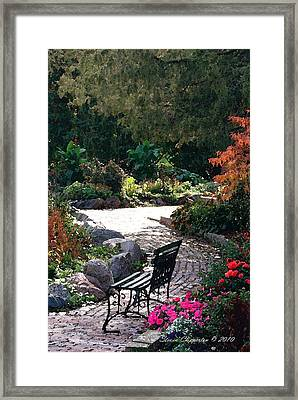 Framed Print featuring the photograph Walk In The Park by Steven Clipperton