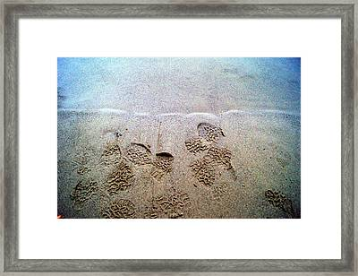 Walk In The Sand Framed Print by Tristan Bosworth