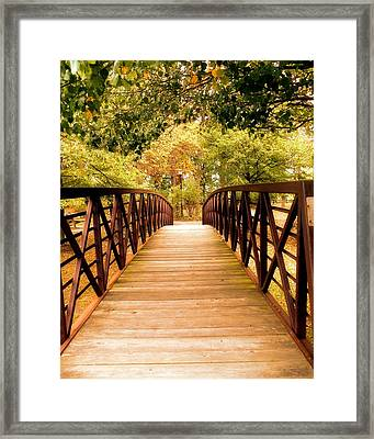 Walk Over Framed Print
